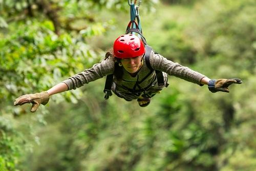 High Ropes Tree Adventure