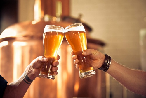 Micro Brewery Tour